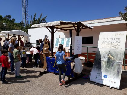 Life Feria ganadera Vilches