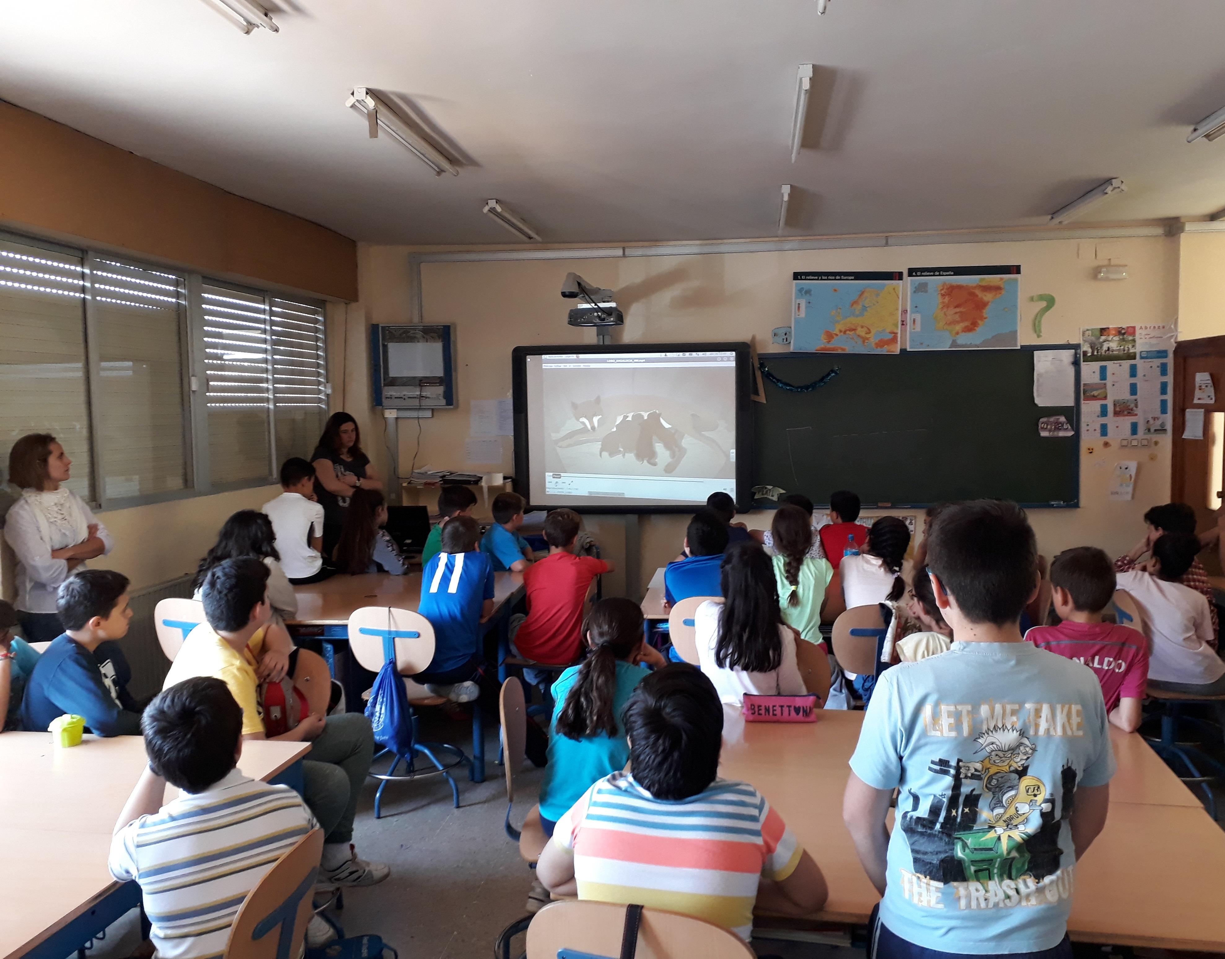 Presencia Life Lobo Colegios