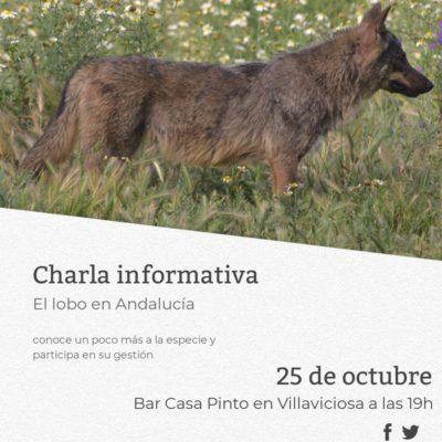 cartel charla Villaviciosa