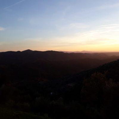 Montería Alcornocosas