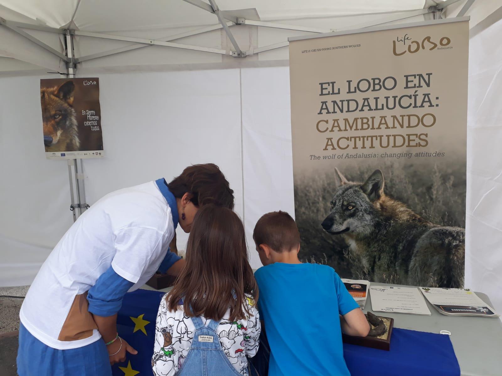 Feria de la Ciencia en Jaén