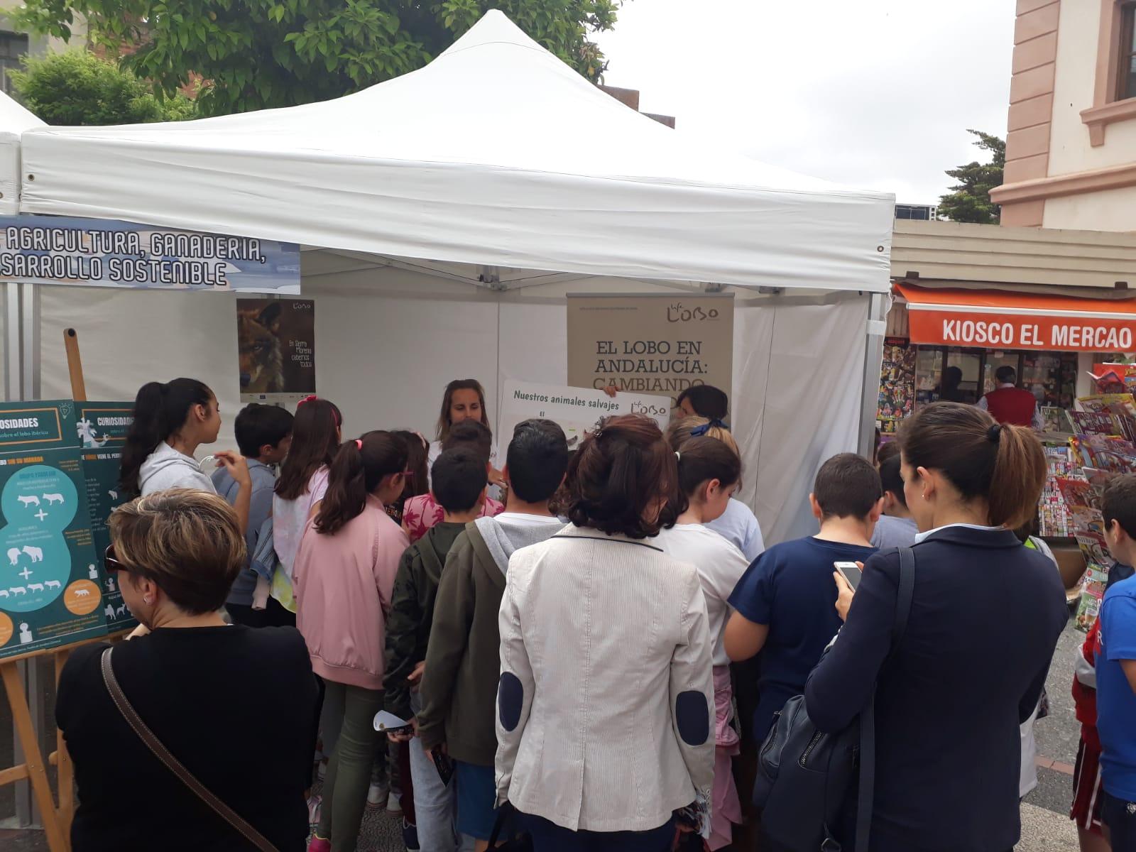Feria de la Ciencia Jaén