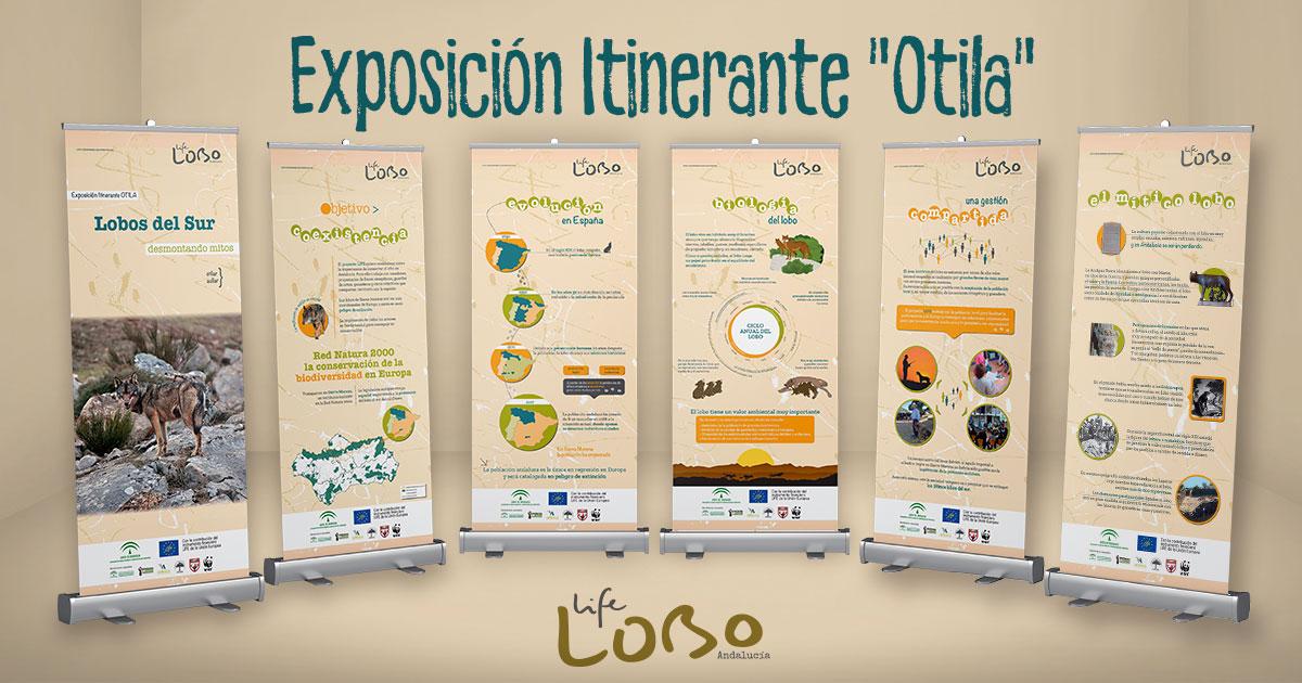 Exposición Otila