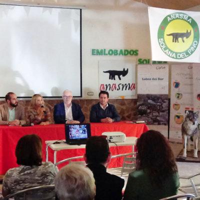 VII Edición 'Emlobados' de Solana del Pino